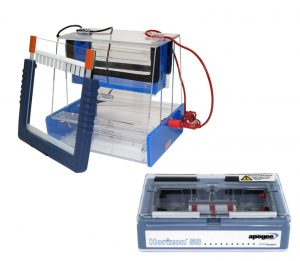 Electrophoresis Systems, Reagents & Accessories